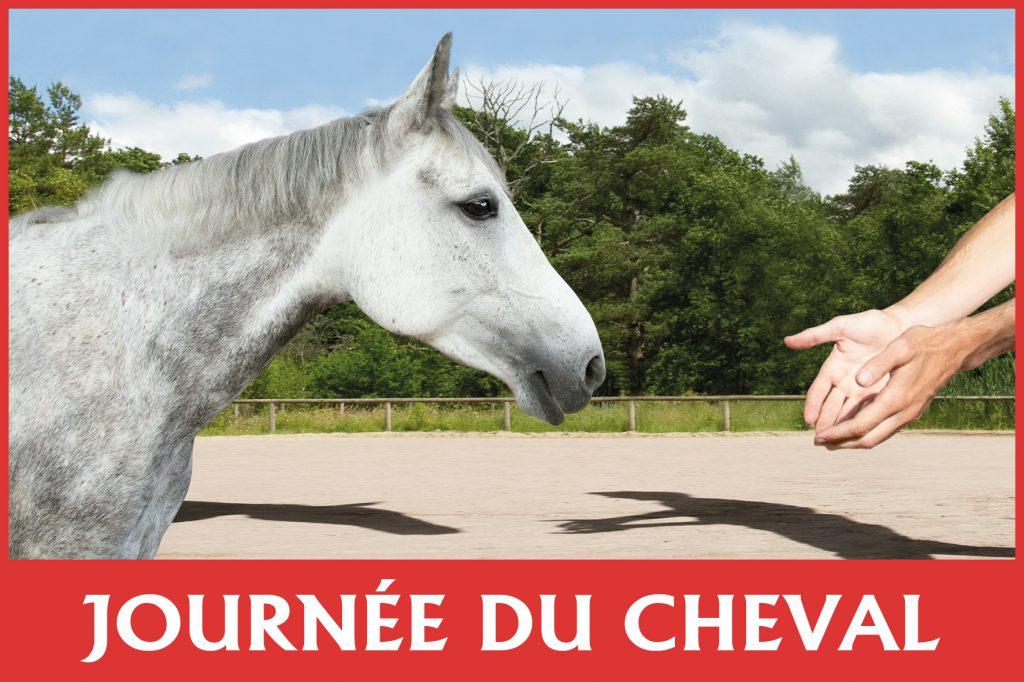 Journée du cheval 2019