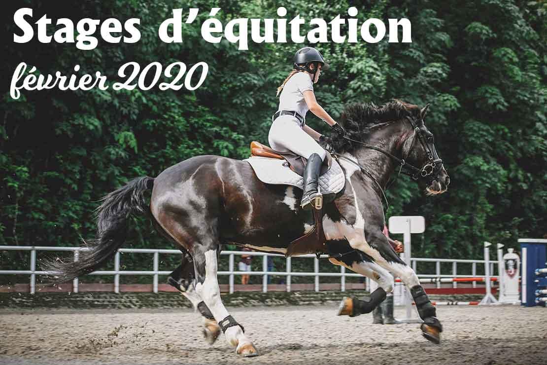 Stages d'équitation la Cavalerie des enfants
